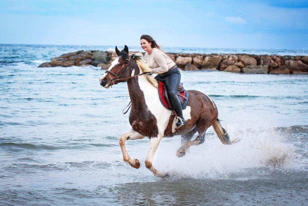 photo equestre plage