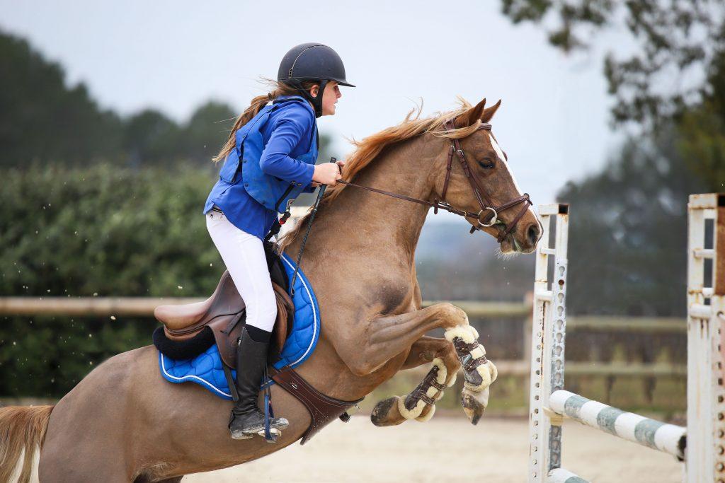 roquebrune-concours-cheval