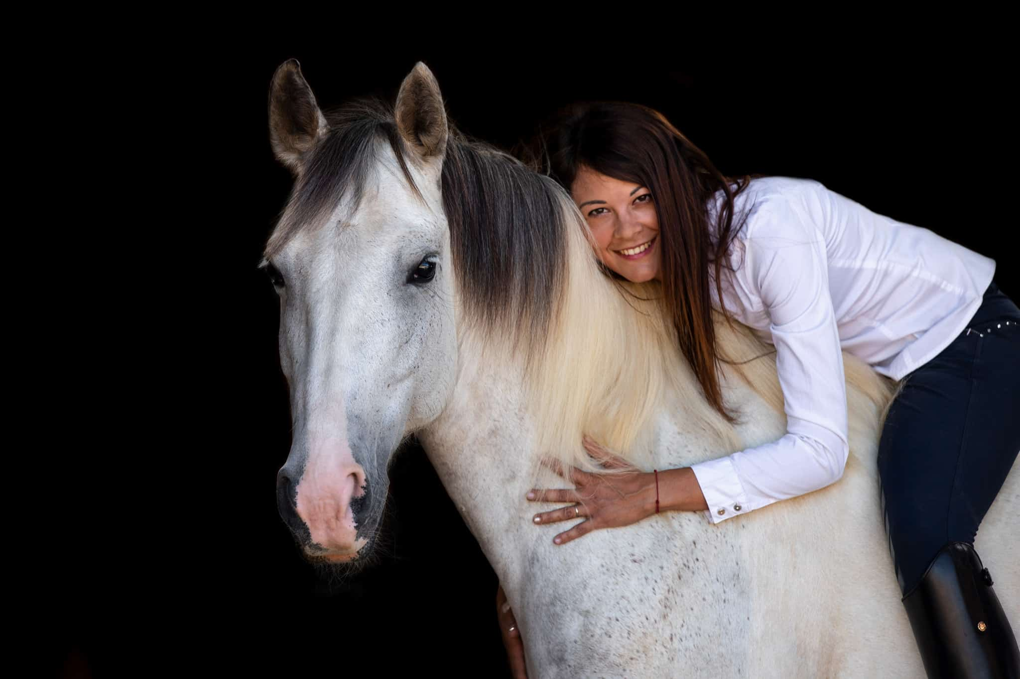 studio-cheval-var