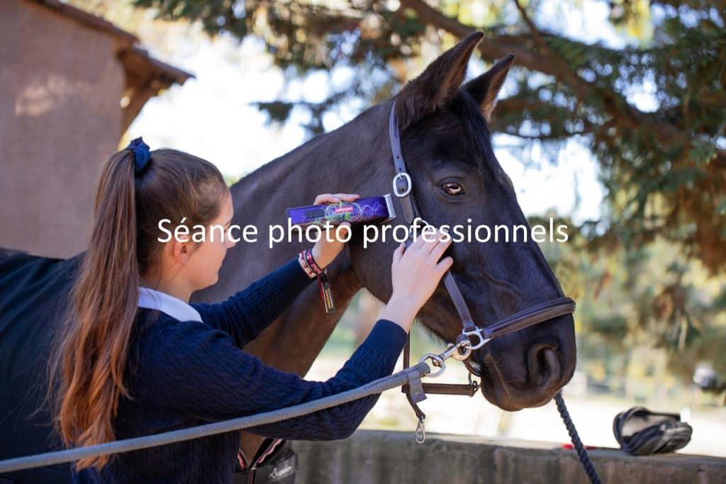 photographe-professionnels-cheval
