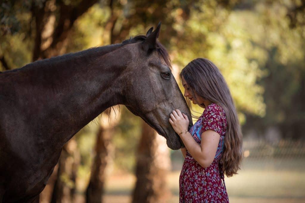 photographe-cheval-frejus