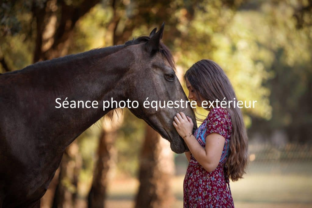 shooting equestre portfolio - portfolio