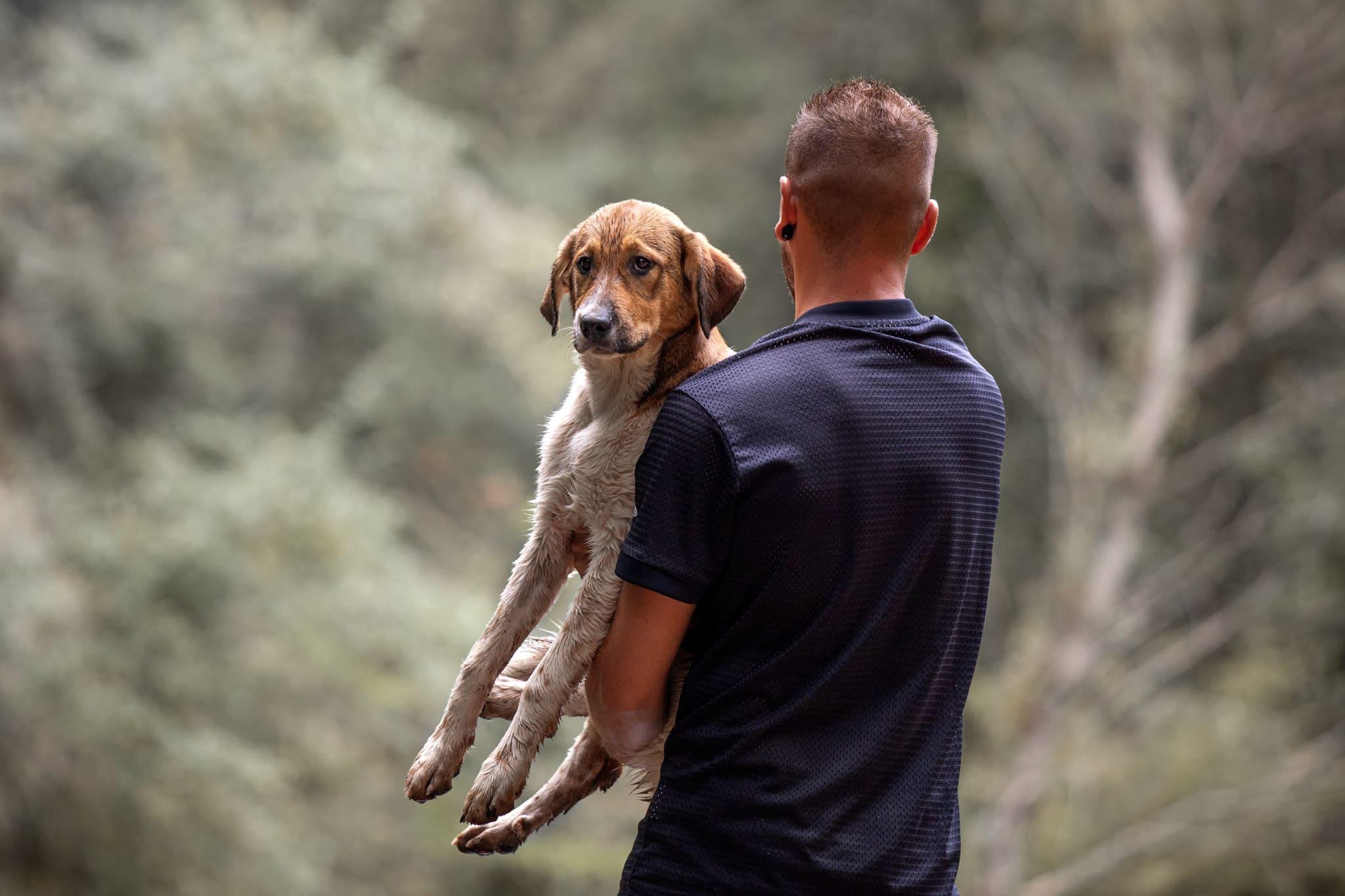 photographe-canin-propriétaire