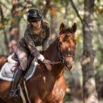photographe-roquebrune-equestre