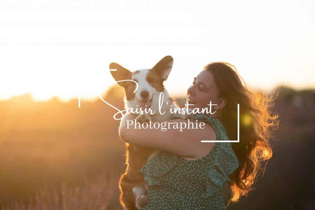 séance photo dans les lavandes à Valensole dans le 04 avec un chien corgi