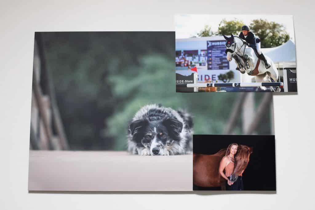impressions provenant de séance photo dans le Var