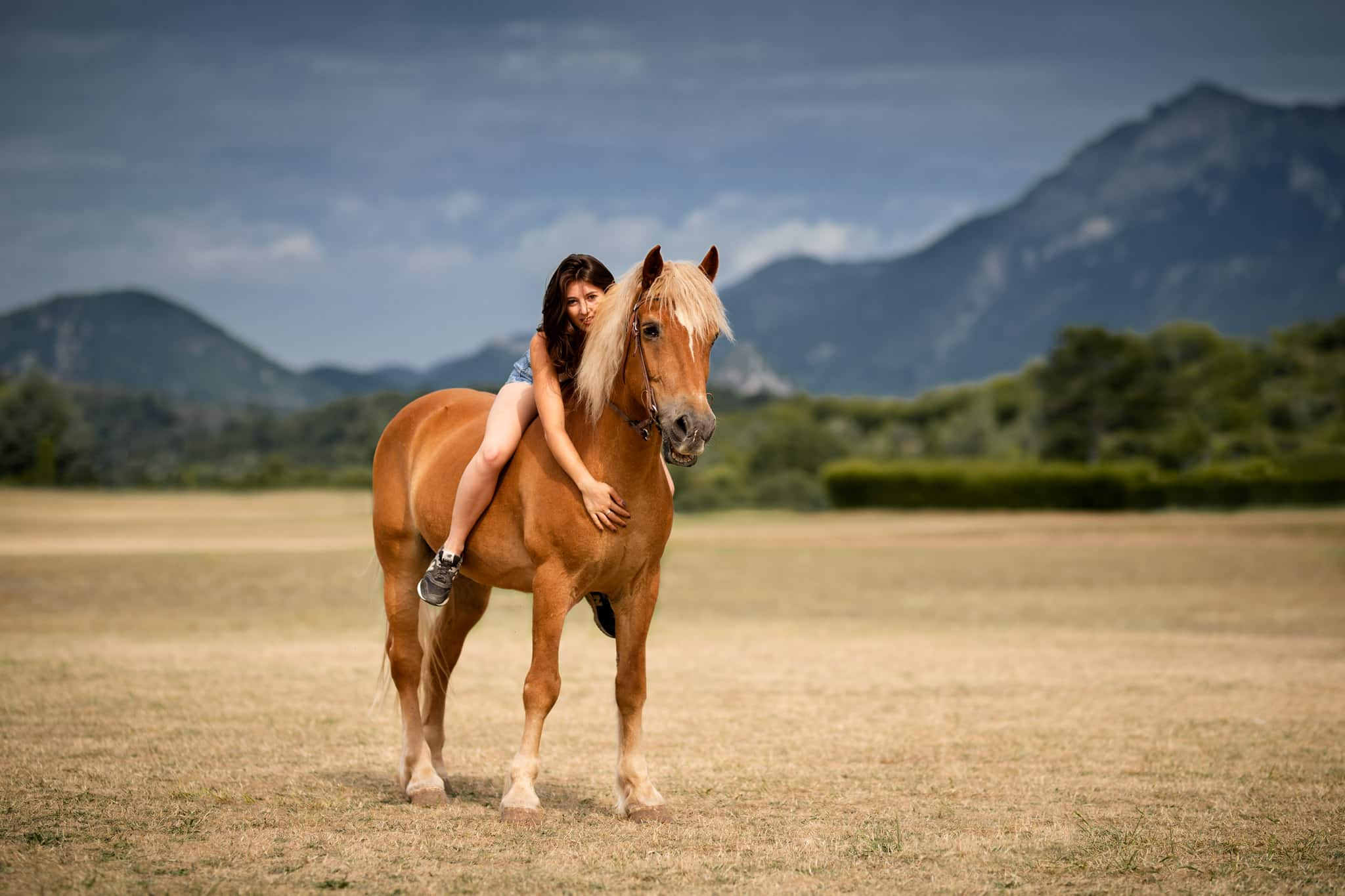 séance photo équine avec un cheval à Toulon