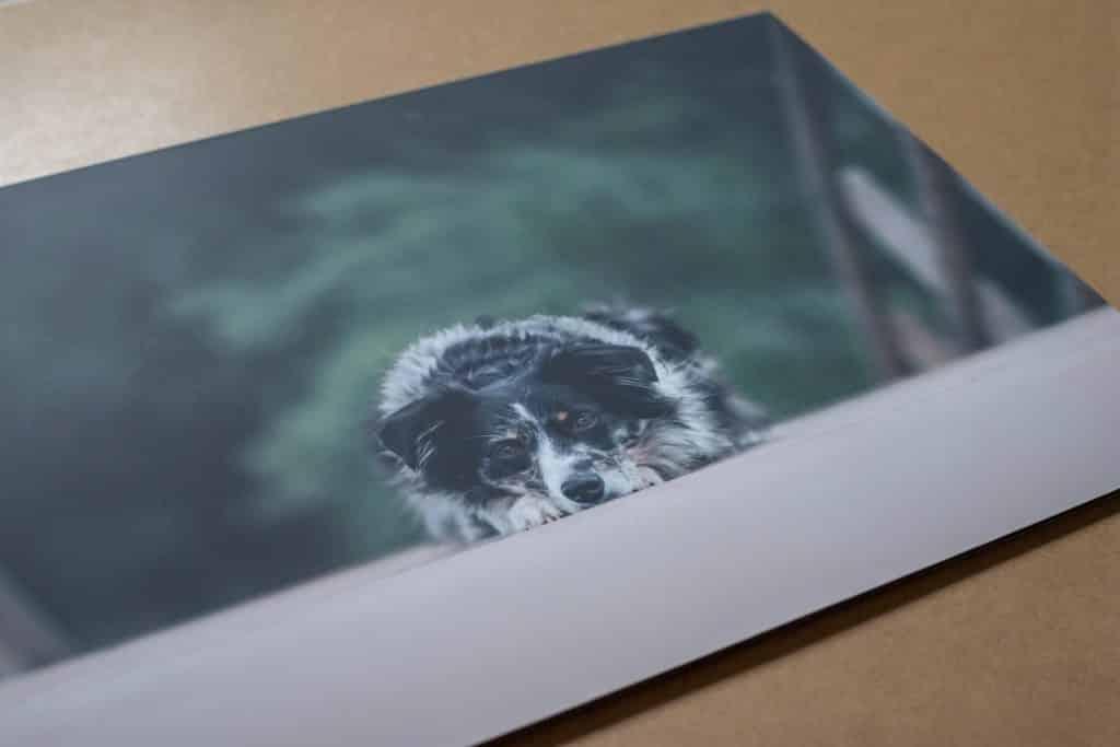 photographe qui propose des tableaux photos à l'occasion de séances photos dans le Var